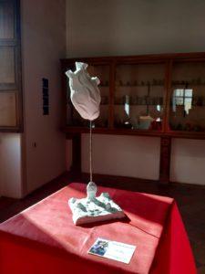 Museo Campano 9 febbraio